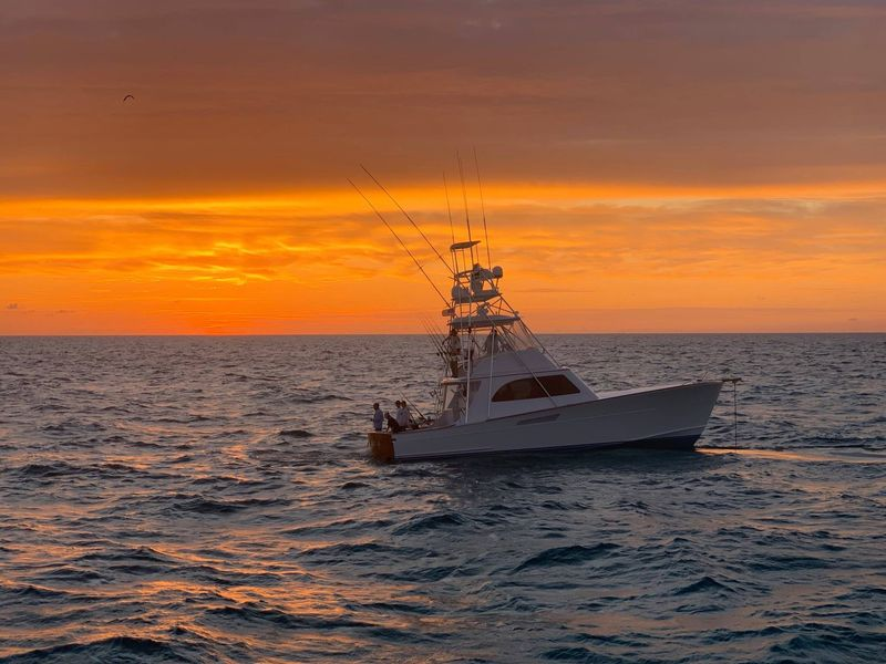 Image for Islamorada Sailfish Tournament