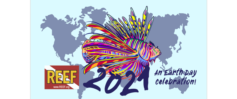 Image for REEF Annual Earth Day Lionfish Derby