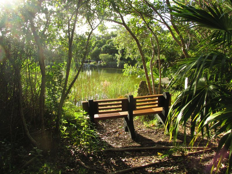 Image for Arbor Day at Key West Tropical Forest & Botanical Garden