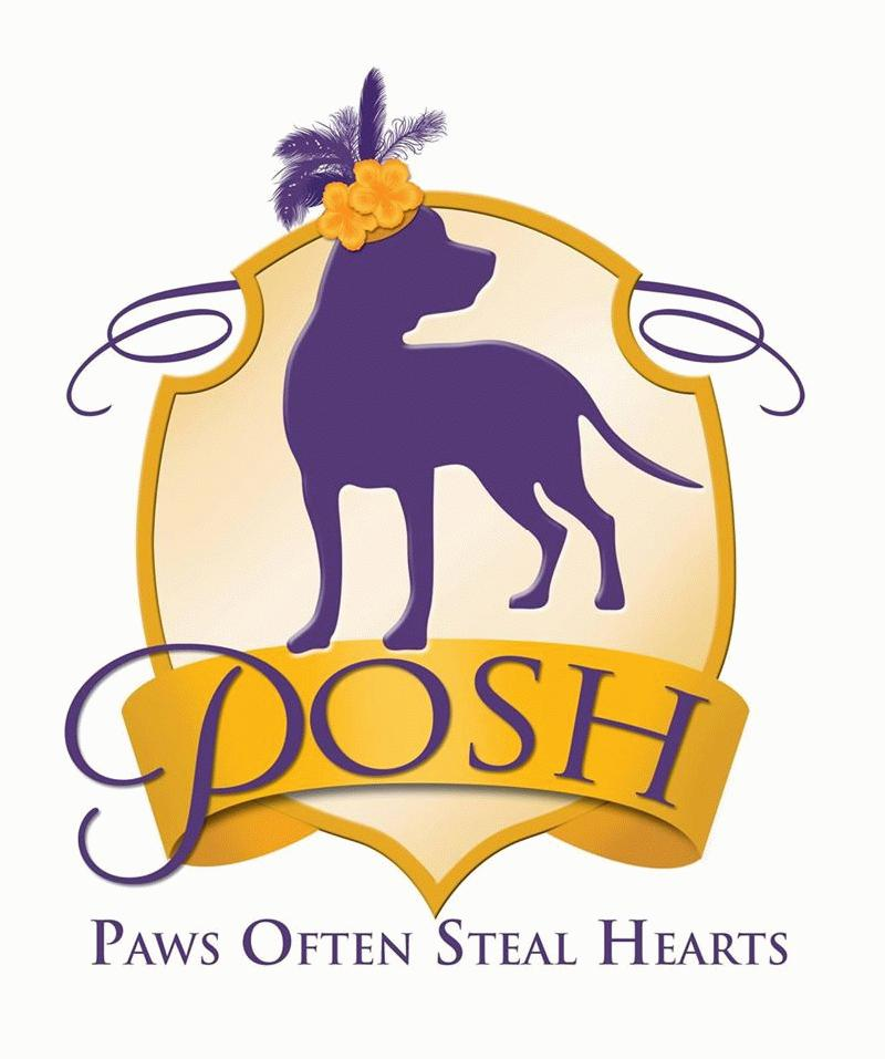 Image for Sixth Annual POSH Event