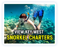 Click here to view a listing of Key West snorkel charters