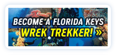 Become a Florida Keys Wreck Trekker!