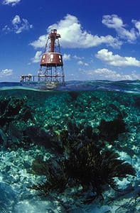 Key Largo Underwater