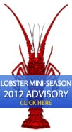 Lobster Mini-Season 2011 Advisory
