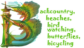 Backcountry, beaches, bird watching, butterflies, bicycling