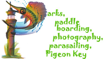 Parks, paddle boarding, photography, parasailing, Pigeon Key