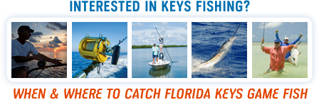 When & Where To Catch Florida Keys Game Fish