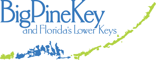 Big Pine Key and Florida's Lower Keys
