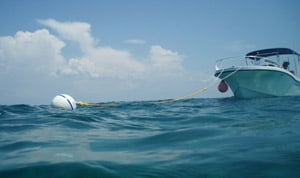Boat Tied to Mooring Buoy in the Florida Keys