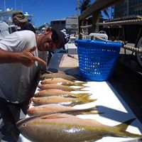 SALTY GOAT FISHING CHARTERS, LLC - Image 4