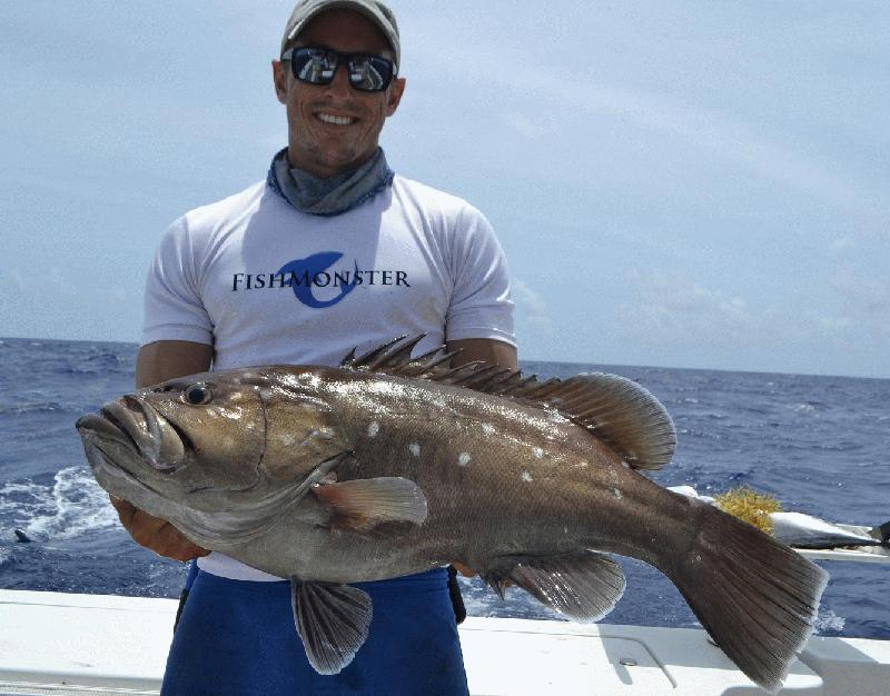 PREMIUM TIME SPORTFISHING AT A&B MARINA KEY WEST - Image 3