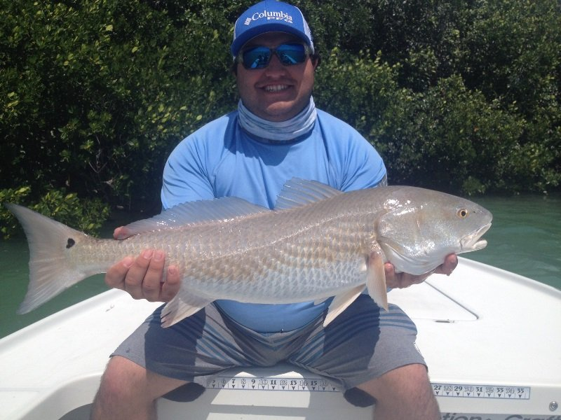 BOWED UP FISHING CHARTERS WITH CAPT. TONY HORSLEY - Image 2