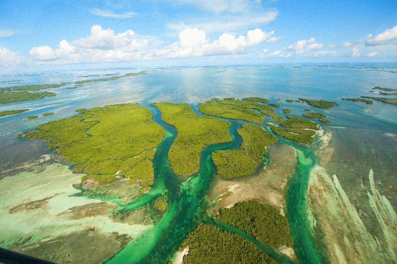 AIR ADVENTURE'S HELICOPTER TOURS - Key West Only Helicopter Tour! - Image 3