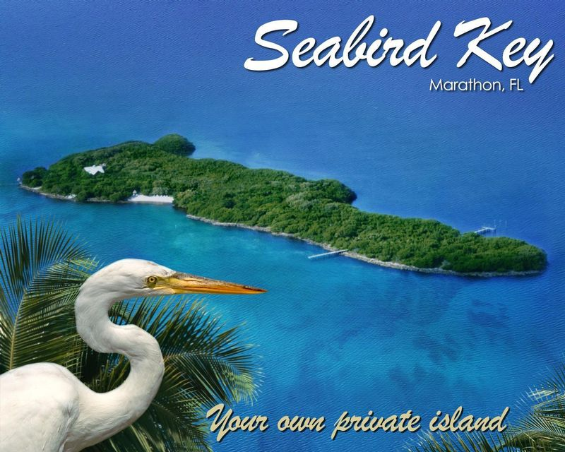 SEABIRD KEY - PRIVATE ISLAND RETREAT - Image 4