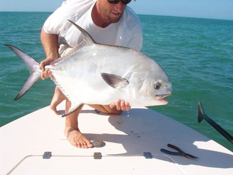 KEY WEST FLATS & BACKCOUNTRY FISHING - Image 1