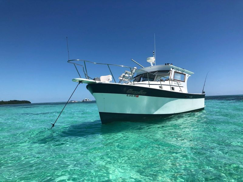 NATIVE SUN PRIVATE CHARTERS - Image 1