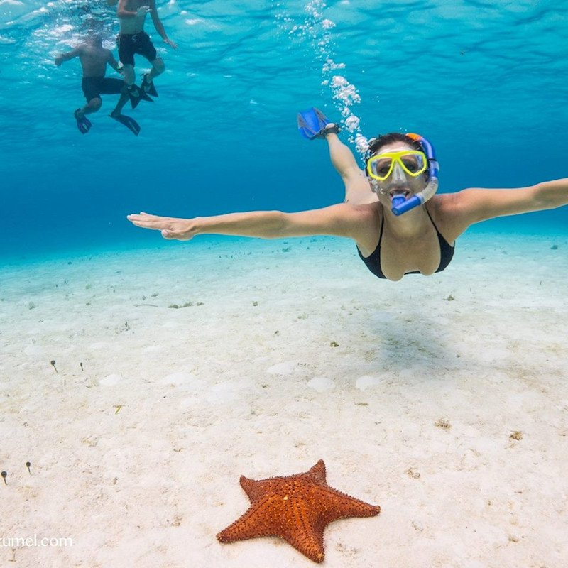 Snorkeling by 888-Fla-Keys, the Best of the Florida Keys - Image 4