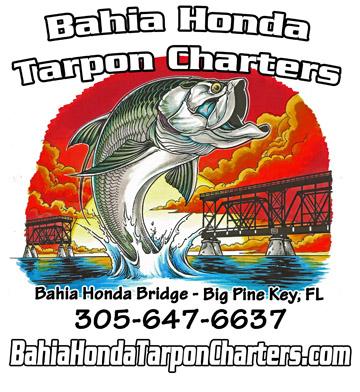 BAHIA HONDA TARPON CHARTERS & MORE - Image 1