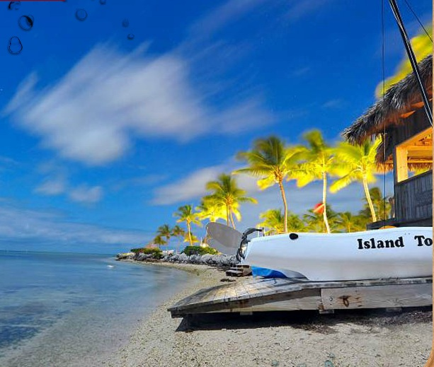 CHESAPEAKE BEACH RESORT - Islamorada - Image 3