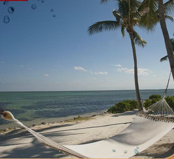 CHESAPEAKE BEACH RESORT - Islamorada - Image 4