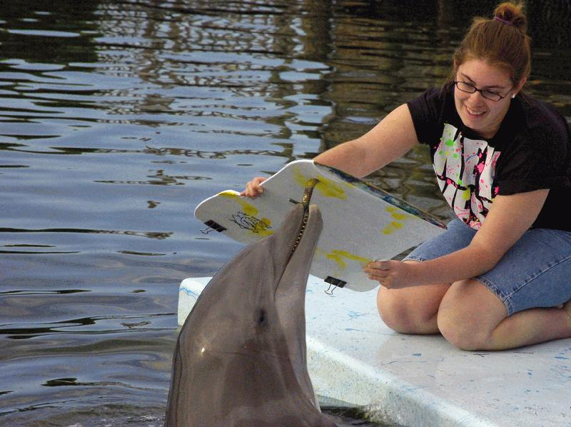 DOLPHIN RESEARCH CENTER - Image 3
