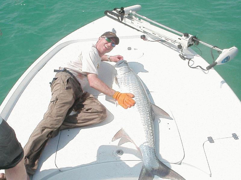 DREAM CATCHER CHARTERS FLATS / BACKCOUNTRY FISHING - Image 2