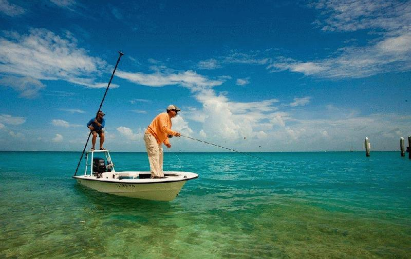 THE SALTWATER ANGLER, INC. - Image 1