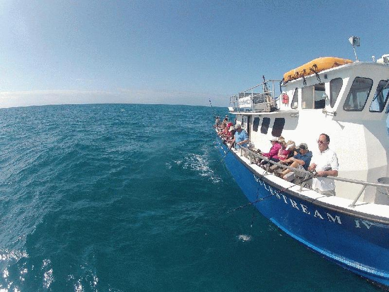 Find key west fishing party boats here at fla for Party fishing boats