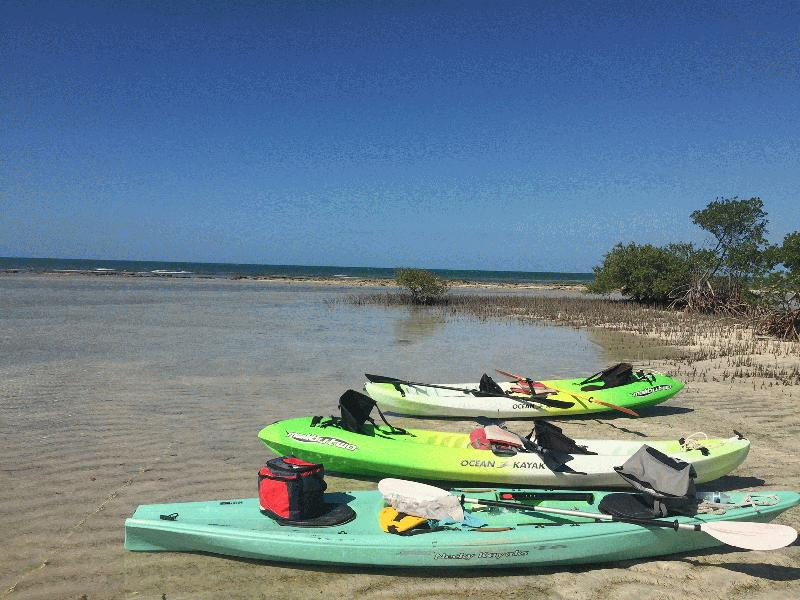 BACKCOUNTRY KAYAKING TOURS - Image 1