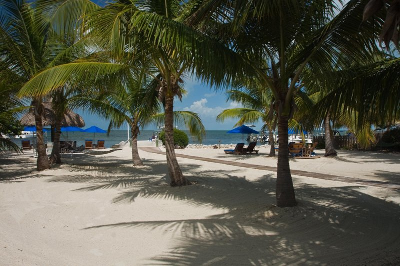 Key Largo Hotels Looking For That Perfect Key Largo Hotel For Your Next Vacation Find Key Largo Hotels Motels Resorts And Accommodations