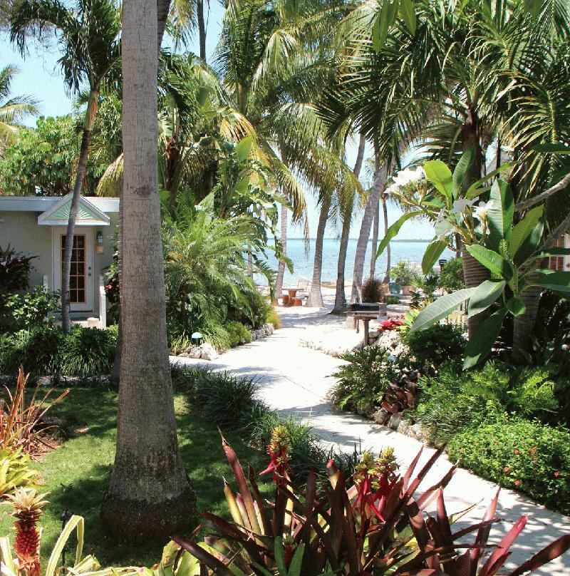 Eco tourism in key largo search eco tours at fla for Florida botanical gardens largo