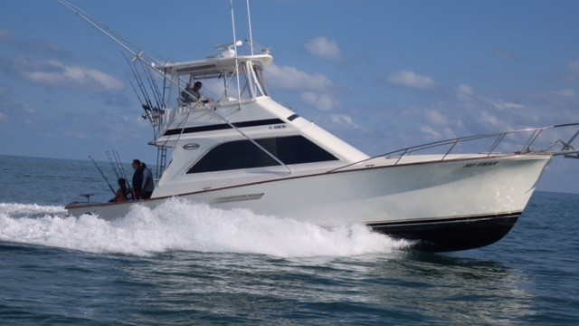 Find Key Largo Deep Sea And Offshore Fishing Trips Here At