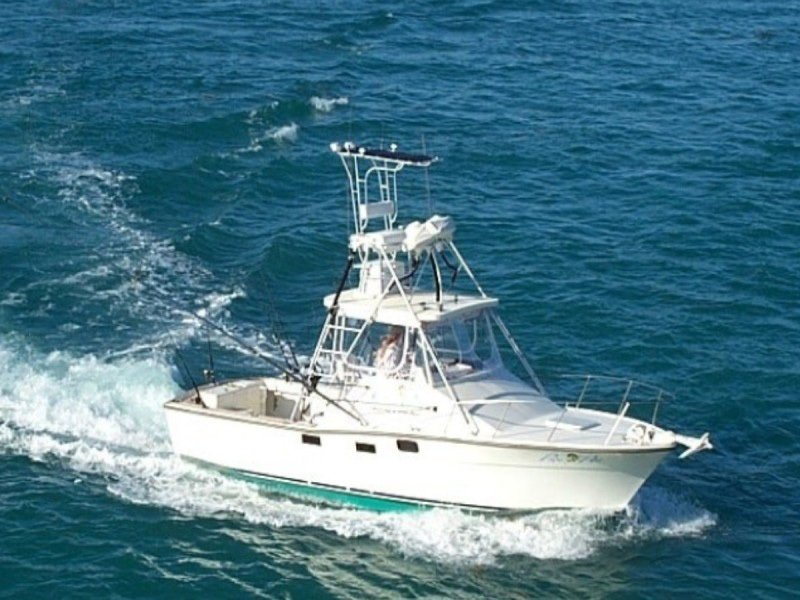 JOHNNY MADDOX FISHING CHARTERS ~ SPORTFISHING ADVENTURES - Image 4