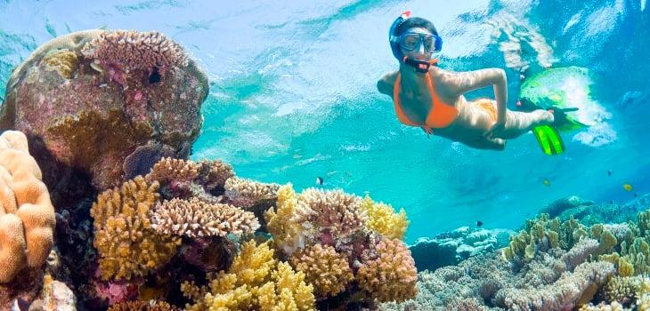Find Key West Snorkeling Information Here At Fla Keys Com