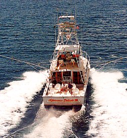 AFTERNOON DELIGHT HIGH-TECH SPORTFISHING ~ Military & Vet Discounts! - Image 4