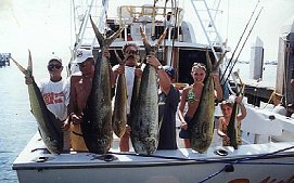 AFTERNOON DELIGHT HIGH-TECH SPORTFISHING ~ Military & Vet Discounts! - Image 2