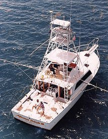 AFTERNOON DELIGHT HIGH-TECH SPORTFISHING ~ Military & Vet Discounts!