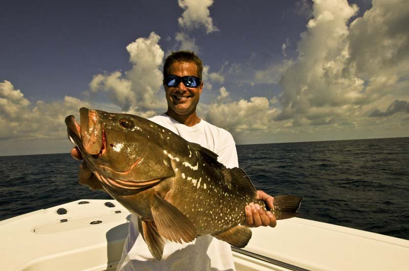 WRECK AND REEF FISHING DREAM CATCHER CHARTERS - Image 4