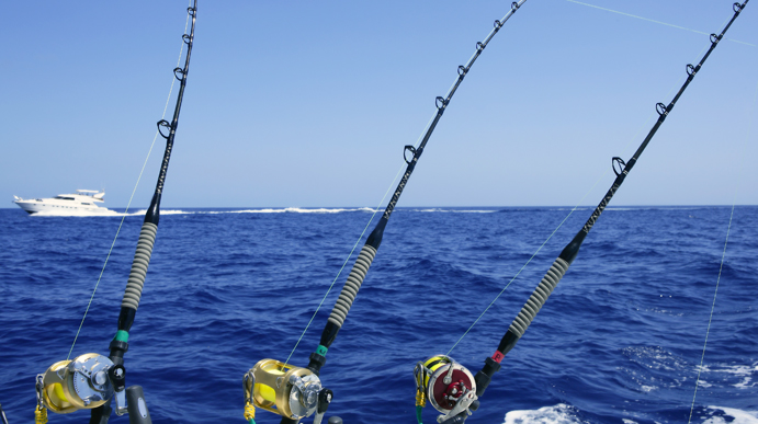 Find key west light tackle fishing trips here at fla keys for Island fishing tackle