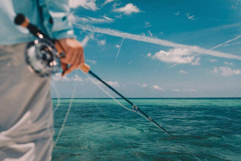 FLAT - OUT SPORTFISHING - Image 1