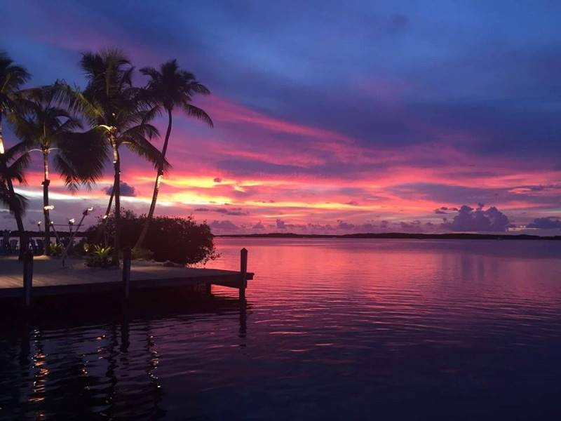 ISLAMORADA FISH COMPANY ~ DESTINATION LANDMARK LOCATION! - Image 2