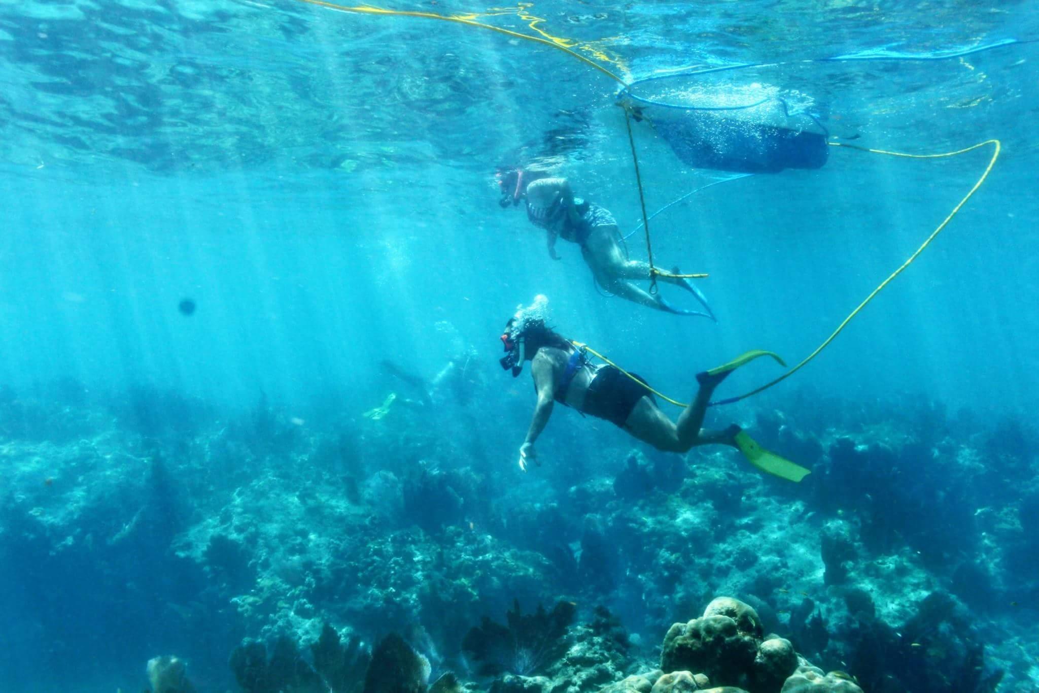 Find Key West Snorkeling Information Here At Fla-Keys.com