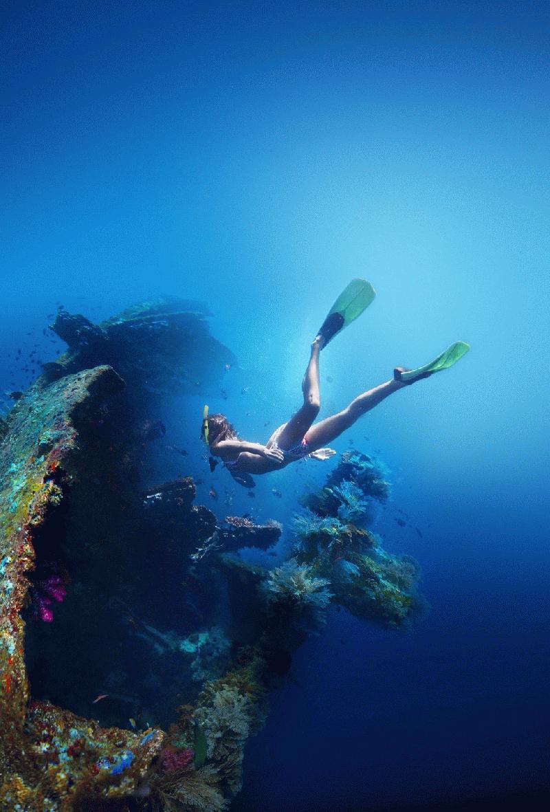 OCEAN DIVERS - Image 2