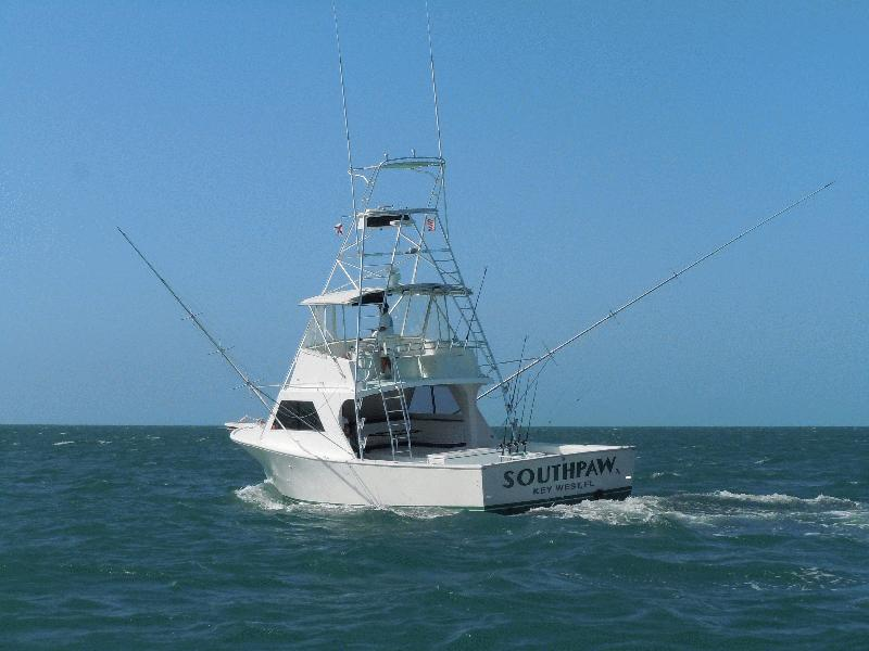 SOUTHPAW FISHING CHARTERS - Light Tackle, Big Boat! - Image 1