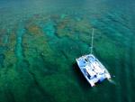 Reef Fury