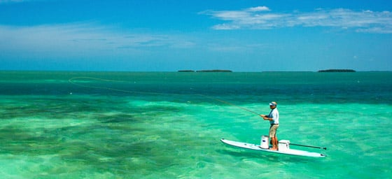 Search florida keys attractions and things to do here at for Best fishing spots in the keys