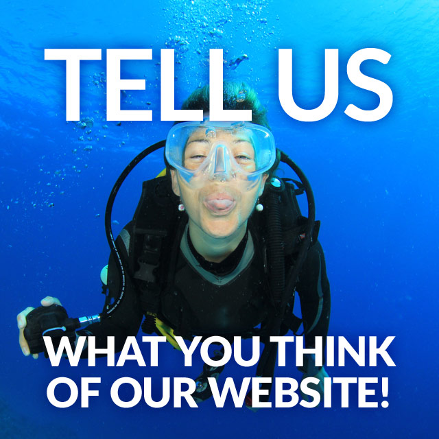 Tell us what you think of our website!