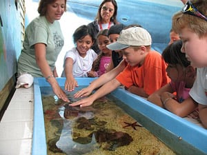 Crane Point touch tank