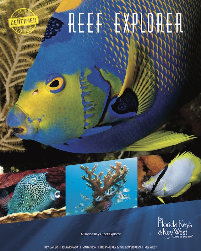 Personalize and Print a Reef Explorer Poster