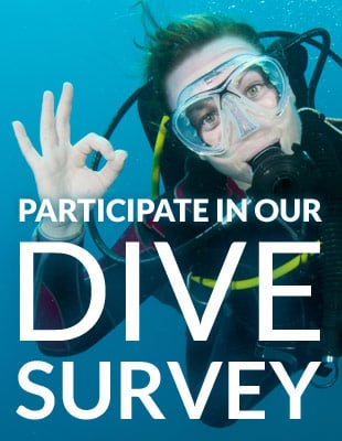 Participate in our dive survey